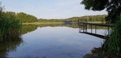 Bild zeigt See in der Natur für mentale Entspannung